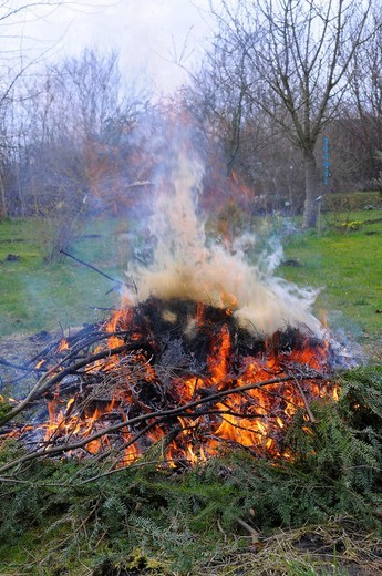 Burning garden waste in a yard : Stock Photo