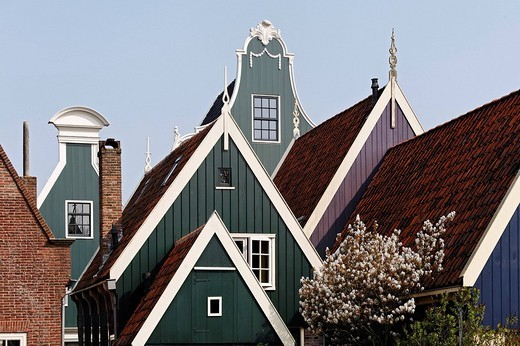 Typical wooden houses from the 17th century, roofs, historic city De Rijp near Alkmaar, Province of North Holland, Netherlands, Europe : Stock Photo