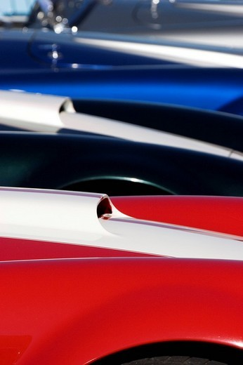 Hoods of the AC Cobra 427, Nuerburgring Classic 2007 : Stock Photo