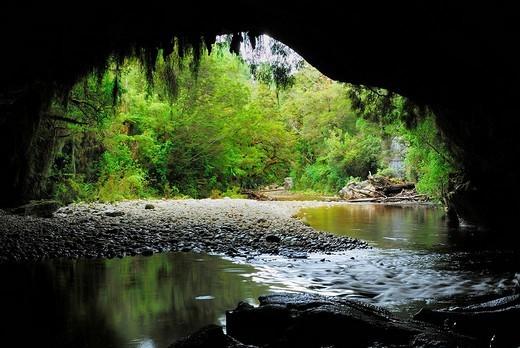 Stock Photo: 1848-157716 Moria Gate Arch, Oparara River, Oparara Basin, Kahurangi National Park, Nelson Region, South Island, New Zealand, Pacific