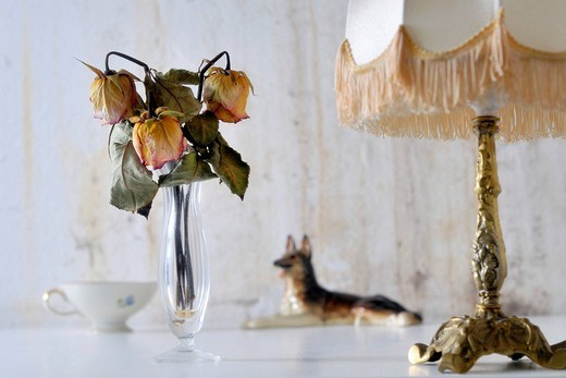 Dried_out roses in a retirement home, symbolic image age_related poverty : Stock Photo