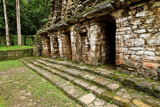 Stock Photo: 1848-163015 Yaxchilan, Selva Lacandona, Lakandonian Forest, Chiapas, Mexico
