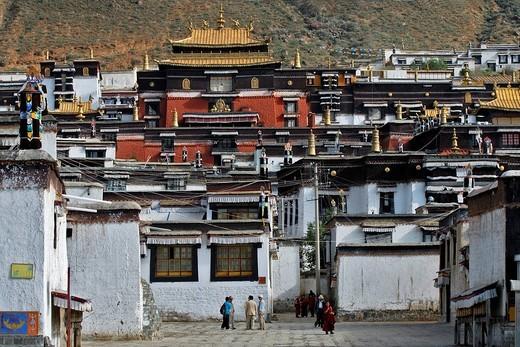 Stock Photo: 1848-163406 Palcho Monastery or Pelkor chode or Shekar, Gyantse, Tibet