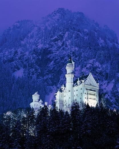 Neuschwanstein Castle near Fuessen, Allgaeu, Bavaria, Germany, Europe : Stock Photo