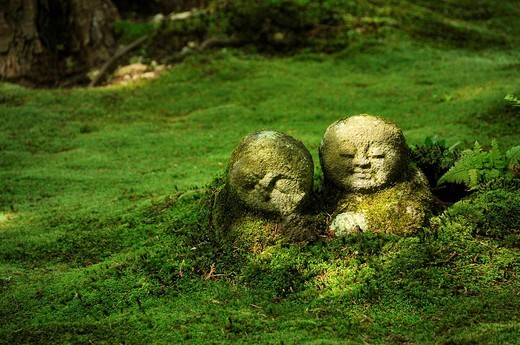 Stock Photo: 1848-164157 Buddhist Jizo figures in the moss garden of the Sanzen_in temple in Ohara in Kyoto, Japan, Asia