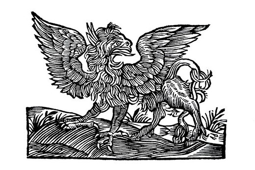 Woodcut, standing griffin with spread wings and open pecker, from: Conrad Gesner, Historia Animalum, 1551, Germany, Europe : Stock Photo