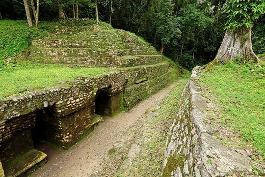 Yaxchilan, Selva Lacandona, Lakandonian Forest, Chiapas, Mexico : Stock Photo