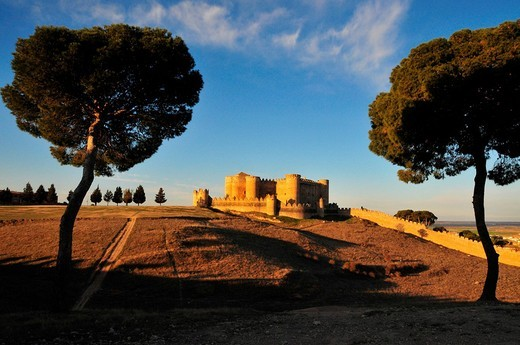Stock Photo: 1848-165666 Dry grass fields surrounding Castillo de Belmonte castle in warm evening light viewed between two trees, Belmonte, Castilla_La Mancha region, Spain