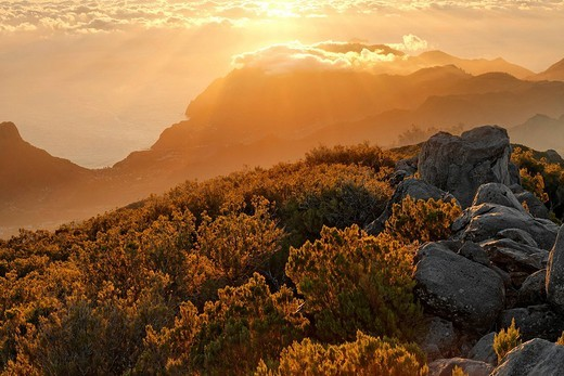 Stock Photo: 1848-167026 Sunrise viewed from the mountain Achada do Teixeira 1592m with a view to the peninsule Ponta de Sao Lorenco, Madeira, Portugal