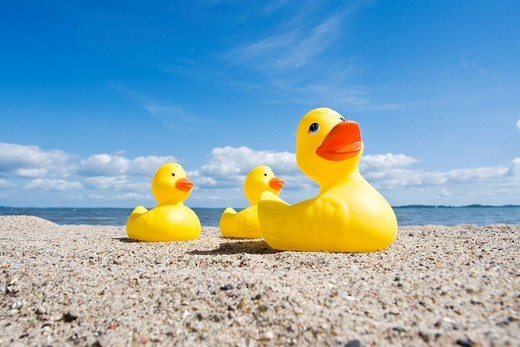 Rubber ducks on the beach, Baltic coast, Schleswig_Holstein, Germany, Europe : Stock Photo