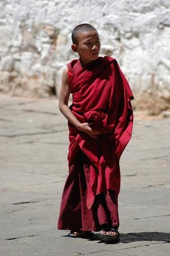 Young monch in Paro dzong, Paro, Bhutan : Stock Photo