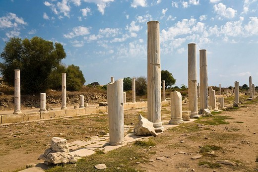 Stock Photo: 1848-175932 Row of columns, Roman ruins in Side, Turkish Riviera, Turkey, Asia