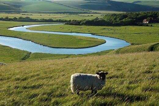 Seven Sisters Country Park, Cuckmere Haven, Sussex, England, UK : Stock Photo