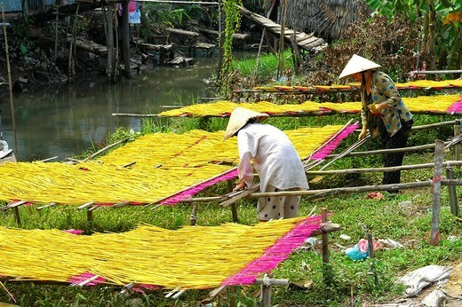 Drying of incense sticks Can Tho, Vietnam : Stock Photo