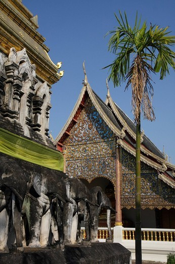 Stock Photo: 1848-178688 Elephant statues and palm tree in front of the temple Wat Chiang Man, Chiang Mai, Northern Thailand, Thailand, Asia