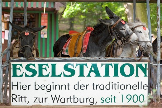 The donkey station below the Wartburg Castle, Eisenach, Thuringia, Germany : Stock Photo