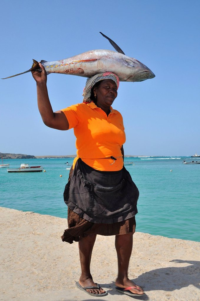 Woman carrying a tuna on her head, Sal Rei, Boa Vista Island, Republic of Cape Verde, Africa : Stock Photo