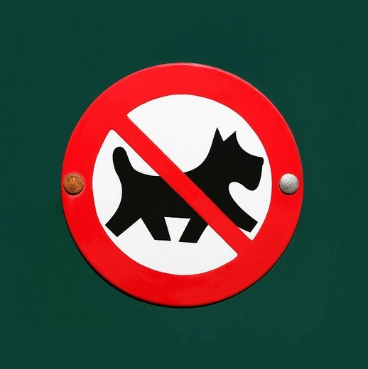 Enamelled sign: No dogs allowed, crossed out dog in a red circle : Stock Photo