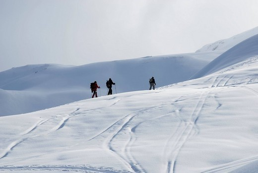 Moutaineers hiking on ski in the Zillertaler alps, Tyrol Austria : Stock Photo