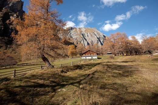 Stock Photo: 1848-188059 Hoazalm near Kals, Hohe Tauern National Park, East Tyrol, Europe