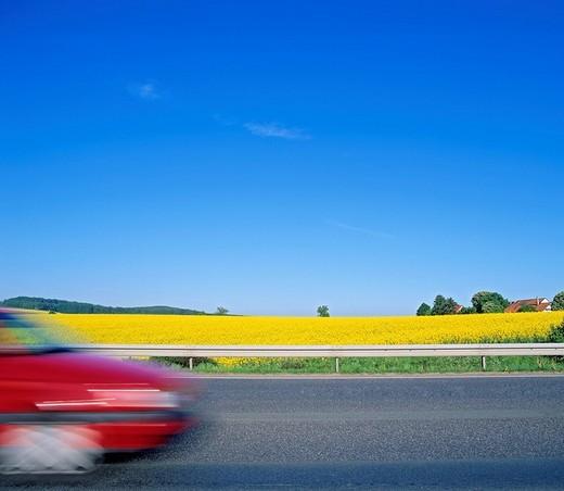 Road, rape field, blurred car, speed : Stock Photo