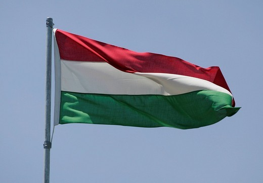 Hungarian flag : Stock Photo