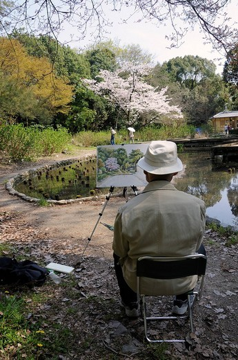 Japanese man painting a flowering cherry tree in the Kyoto Botanical Garden, a popular hobby among Japanese seniors, Kyoto, Japan, East Asia, Asia : Stock Photo