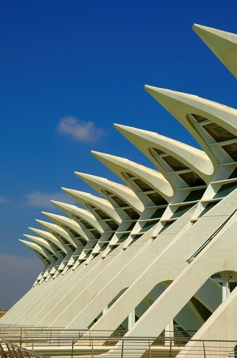 Stock Photo: 1848-19524 Príncipe Felipe Museum of Sciences, City of Arts and Sciences by S. Calatrava, Valencia, Comunidad Valenciana, Spain, Europe