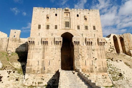 Citadelle of Aleppo, Syria : Stock Photo