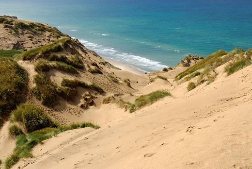 Dune landscape at Rubjerg Knude, Jammerbugt, Hjoerring, North West Jutland, Vendsyssel, Denmark, Scandinavia, Europe : Stock Photo
