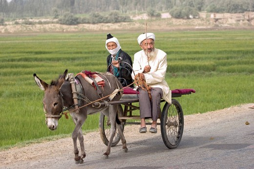 Married couple of the ethnical group Uyghurs on a donkey cart on the Silk Road, China, Asia : Stock Photo