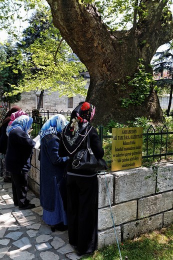 Women, Muslima, praying at a tomb under a tree, Prince mosque Sehzade Camii, Istanbul, Turkey : Stock Photo