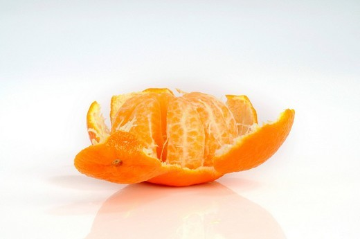 Stock Photo: 1848-207161 Clementines