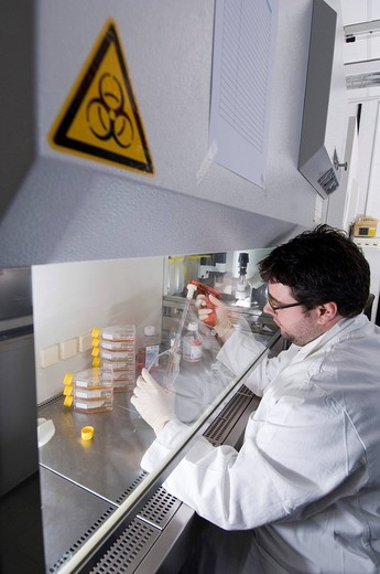 Stem cell research, Max Planck Institute for Molecular Genetics, scientist, laboratory technician cultivating stem_cells, Berlin, Germany : Stock Photo