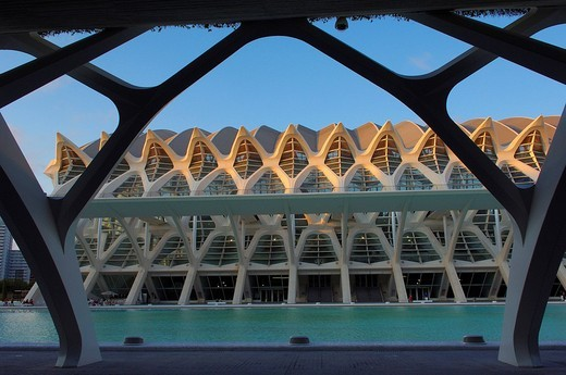 Príncipe Felipe Museum of Sciences, City of Arts and Sciences by S. Calatrava, Valencia, Comunidad Valenciana, Spain, Europe : Stock Photo