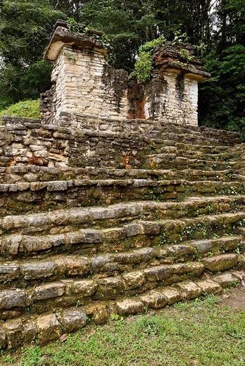 Maya site Bonampak, Selva Lacandona, Lakandonian Forest, Chiapas, Mexico : Stock Photo