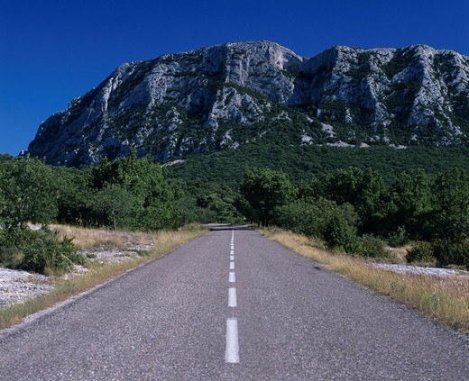 Road to Le Pic St. Loup, St. Martin de Londres, Languedoc_Roussillon, France : Stock Photo