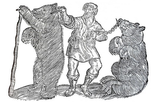Woodcut, tamer and two dancing bears on a chain attached to rings through their noses, Conrad Gesner, Historia Animalium, 1551, Renaissance : Stock Photo