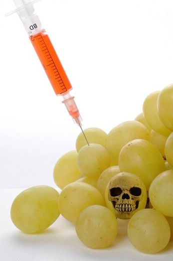 Syringe in grapes, symbolic image for genetically modified foods : Stock Photo