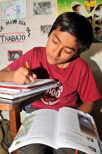 Schoolboy sitting at a table learning, Slum Area Plan 3000, Santa Cruz, Bolivia, South America : Stock Photo