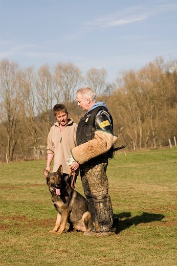 Stock Photo: 1848-221152 Man and woman training a German shepherd dog in protective behavior in Daun, Vulkaneifel, Germany, Europe