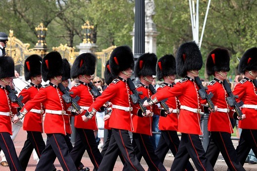 Stock Photo: 1848-223457 Royal Guard in front of Buckingham Palace, London, England, Great Britain, Europe