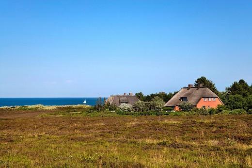Frisian house, Braderup heath, Braderup, Sylt, North Frisia, Schleswig_Holstein, Germany, Europe : Stock Photo