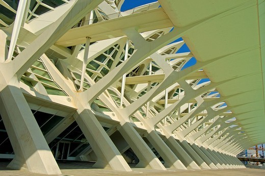 Stock Photo: 1848-224411 Príncipe Felipe Museum of Sciences, City of Arts and Sciences by S. Calatrava, Valencia, Comunidad Valenciana, Spain, Europe
