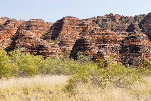 Bungle Bungle, Purnululu National Park, World Heritage Site, Kimberley, West Australia, Australia : Stock Photo