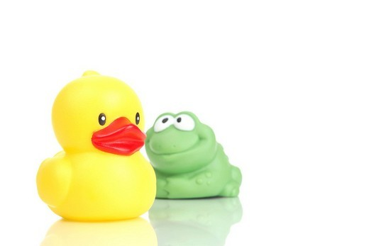 Rubber ducky and frog : Stock Photo