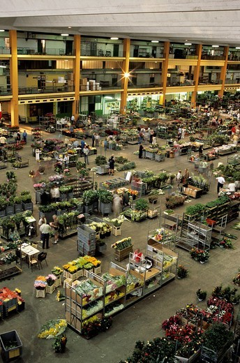 Stock Photo: 1848-233935 Flower wholesale, Nice, France