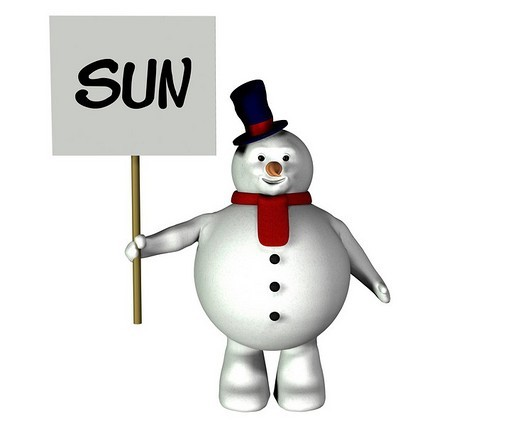 Snowman with sign : Stock Photo