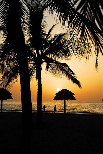 Stock Photo: 1848-235021 Sunset at the Gulf of Oman, Muscat, Oman