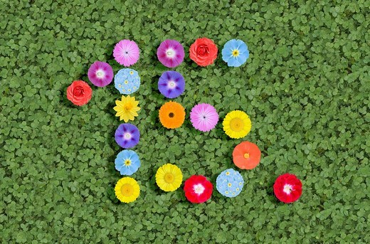 Numbers written with flowers : Stock Photo